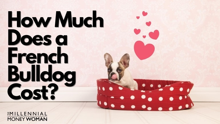 """the millennial money woman blog post """"how much does a french bulldog cost"""""""